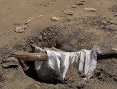 قارئ يشكو وجود بالوعات بدون غطاء بشارع مجمع المدارس فى أرض اللواء