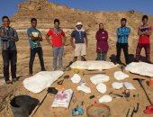 جامعة المنصورة تعلن قريبًا عن ثالث اكتشاف حفرى عالمى جديد