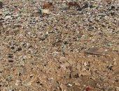 قارئ يشكو من انتشار القمامة بالقرب من مطار القاهرة