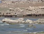 """تعرف على مسببات تلوث نهر """"الليطانى"""" فى لبنان.. فيديو"""