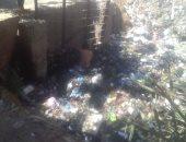 مطالب بتطهير ترعة الرشيدية فى كفر الشيخ من القمامة لرى الأراضى الزراعية