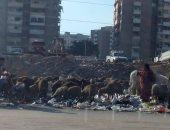 قارئة ترصد انتشار المخلفات والقمامة بشوارع مدينة نصر