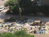 قارئة تشكو تراكم القمامة بشارع عبد الحميد لطفى فى مدينة نصر