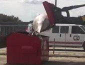 الشرطة الأمريكية تعتذر بعد إلقاء حوت فى صندوق مهملات بالشارع ..فيديو