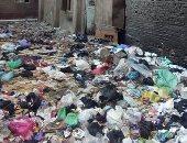 شكوى من سيارات بدون لوحات معدنية وقمامة فى شارع بيجام بشبرا الخيمة