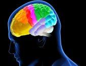 بالكلمات المتقاطعة.. أفضل الطرق الصحية لتمرين عقلك من خلال الألعاب