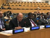 سامح شكرى: الطريق لحل أزمات سوريا وليبيا يمر عبر استعادة مؤسسات الدولة