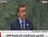 وزير خارجية الإمارات: دول مارقة تقدم الدعم للجماعات الإرهابية