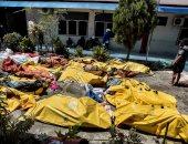 ألمانيا تؤكد مواصلة العمل للحد من الكوارث فى أنحاء العالم