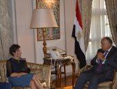 صور.. وزير الخارجية: مجال حقوق الإنسان على قمة أولويات الحكومة المصرية