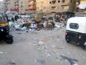 قارئ يشكو انتشار القمامة بجوار كبائن الغاز بمنطقة أم بيومى بشبرا الخيمة