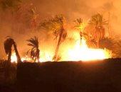 إصابة مدير الحماية المدنية فى حريق الراشدة.. وارتفاع حالات الاختناق إلى 32