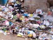 قارئ يطالب برفع القمامة من شارع شعراوى بمدينة الزقازيق