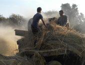 كيف تعامل القانون الجديد مع المخلفات الزراعية والتخلص منها؟