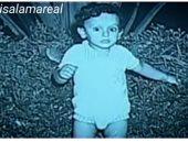 شاهد.. صورة نادرة للفنان هانى سلامة فى سن الطفولة