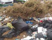سكان منطقة غرب ارابيلا التجمع الخامس يشكون من انتشار القمامة