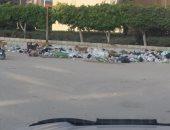 القمامة والكلاب الضالة مشاكل تؤرق أهالى زهراء مدينة نصر