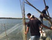صور.. حملة لإزالة التعديات على بحيرة البرلس وضبط المخالفين