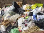 شكوى من انتشار القمامة وسوء الخدمات فى شارع المشتل بمنطقة محور ٢٦ يوليو