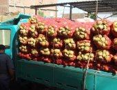 """دواوين الوزارات.. """"الزراعة"""" تعلن ارتفاع صادرات مصر من البطاطس لـ539 ألف طن"""