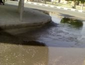 اضبط مخالفة.. مياه الصرف تحاصر أهالى المنطقة الثامنة بمدينة السادات