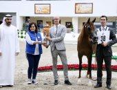 نائب وزير الزراعة: مذكرة تفاهم مع الإمارات لبناء مستشفى للخيول بمصر