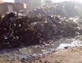 قارئ يشكو من محاصرة القمامة لمدرسة فى القناطر