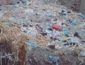 قارئ يشكو تراكم القمامة بقرية ميت البيضا فى المنوفية