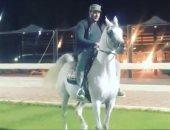 ماذا قال أحمد السقا عن الخيل العربى الأصيل؟.. فيديو