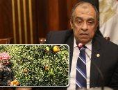 """""""الزراعة"""" توافق على تصدير 13 ألف شتلة فاكهة و5 أطنان تقاوى خلال أسبوع"""
