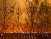60 قتيلاً جراء حرائق غابات فى جنوب السودان