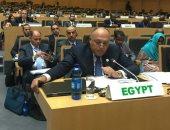 الخارجية ترد على إدعاءات مقررة مجلس حقوق الإنسان المعنية بالحق فى السكن