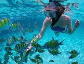 صور.. الأنشطة البحرية تجذب السياح من 30 دولة لمياه البحر الأحمر
