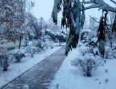 صور.. الثلوج تملأ شوارع مدينة تاتشنج بإقليم شينجيانغ بالصين