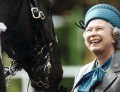 92 سنة مش كتير.. شاهد الملكة إليزابيث فى جولة بالخيل حول القصر الملكى