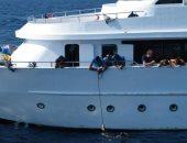 محميات البحر الأحمر: وقف ترخيص لانش يلقى الأطعمة للقروش 3 شهور
