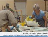 فيديو.. مستشفى لترميم التماثيل التاريخية فى الأرجنتين