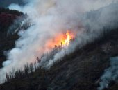 نيوزيلندا تجلى نحو 700 شخص من بلدة جنوبى البلاد بسبب حريق غابات