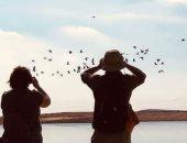 زيارات للمشاركين بمؤتمر التنوع البيولوجى لمشاهدة الطيور المهاجرة بشرم الشيخ