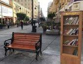 بعد وضع مكتبة مجانية للمارة.. القومى للتنسيق الحضارى: نرحب بالأفكار الجديدة