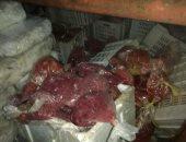صور.. شرطة التموين تضبط 1.5 طن أسماك فاسدة قبل استخدامها بمطعم شهير