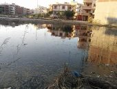 عمارات 15 مايو بجمصة تغرق فى مياه الصرف الصحى.. والأهالى يناشدون المسئولين بالتدخل