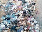 قارىء يشكو من تراكم القمامة بقرية فى مركز الحسينية بالشرقية