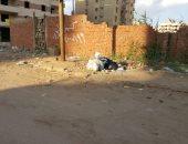 قارئة تشكو تراكم المخلفات بأخر مصطفى النحاس وغياب جامعى القمامة