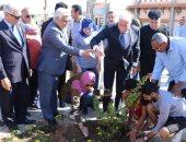 محافظ جنوب سيناء يغرس شجرة زيتون فى اليوم العالمى للتطوع بشرم الشيخ