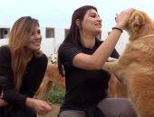 شاهد.. جمعية تونسية تقيم ملجأ للقطط والكلاب الضالة