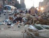 شكوى من تلال القمامة والمواقف العشوائية فى شارع كريستال عصفور بشبرا الخيمة