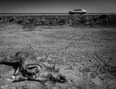 10 صور تظهر الآثار المدمرة لتغير المناخ على كوكب الأرض
