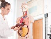اعراض الكبد الدهنى واسباب الاصابة به