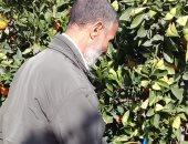الزراعة: برامج توعوية وحملات إرشادية بغيطان الخضر تجنبا للمناخ المتغير